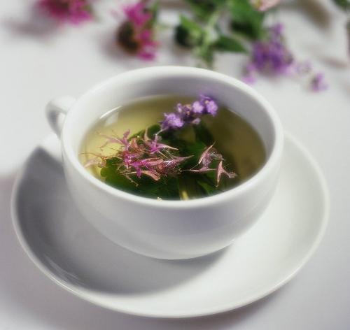 канкура чай для похудения